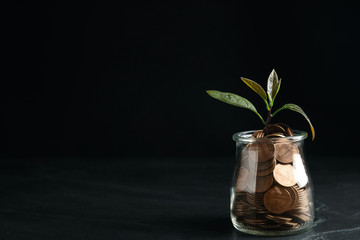 Glass jar with coins and green plant on black table, space for text