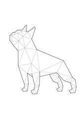 Low poly illustrations of dogs. French Bulldog standing.