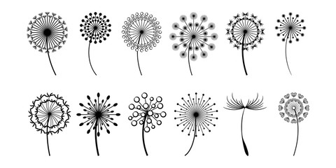 dandelion vector set collection graphic clipart design