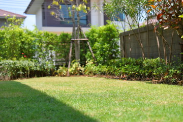 Tuinposter Gras lawn landscaping garden with green grass turf and small plant decoration outside home