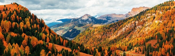 Wall Murals Brick Dolomites Autumn foliage