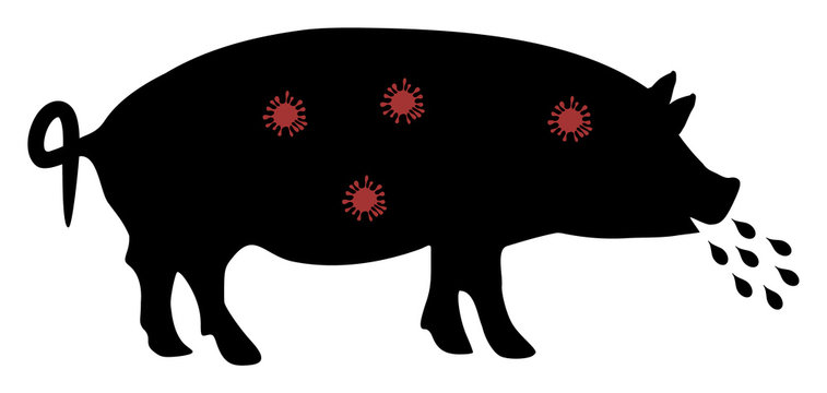 Pig plague vector icon. Flat Pig plague symbol is isolated on a white background.
