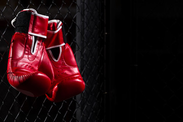 Red Boxing gloves hang on the grid of the octagon of the ring for fights without rules on a dark background. Copy space.