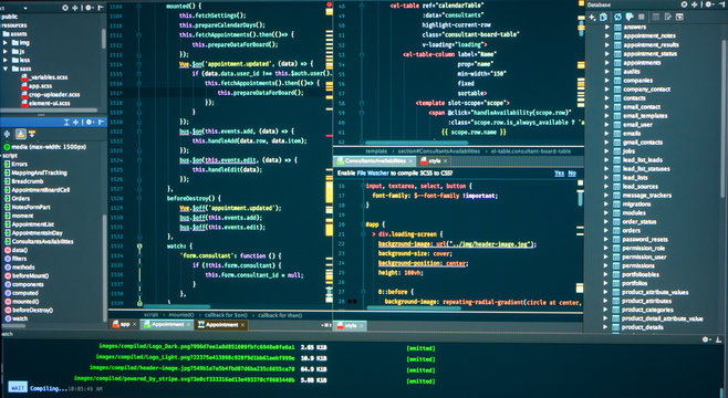 Вatabase structure, code structure, concole, logs, frontend, markup, Javascript source code for application development. Programmer workflow