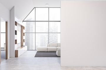 White living room with bookcase, sofa and mock up