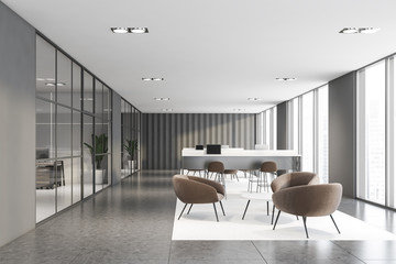 Gray office with coworking and waiting room