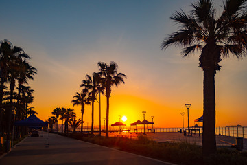 Cyprus. Limassol promenade at sunset. Sunset on the Mediterranean sea. The Molos waterfront in Limassol. Silhouettes of palm trees, lanterns and umbrellas against the setting sun. Holidays in Cyprus. Wall mural