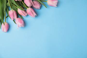 Fotorolgordijn Tulp Beautiful pink spring tulips on light blue background, flat lay. Space for text