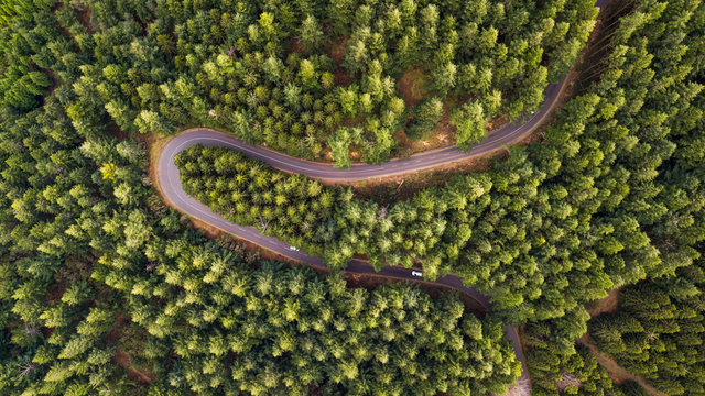 Drone aerial view from above on road and through the forest, Madeira island, Portugal