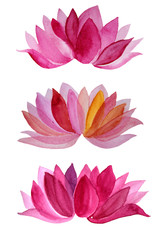 Set watercolor hand-drawn pink flower lotus isolated on white background