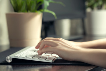 Girl works at home at the computer. Female hands are typing on the keyboard