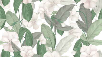 Floral seamless pattern, white pansy flowers with various green leaves on white