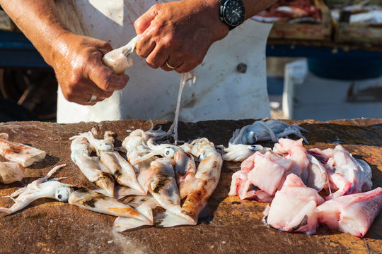 Italy, Sicily, Trapani Province, Trapani. Cleaning squid at the market in Trapani.
