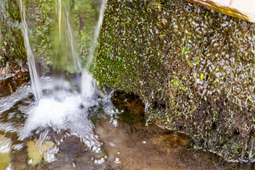 Tuinposter Bos rivier A small natural waterfall in the forest, among stones, branches and logs. There is a lot of green vegetation and moss around. The murmur of a pure natural stream flowing down to the source