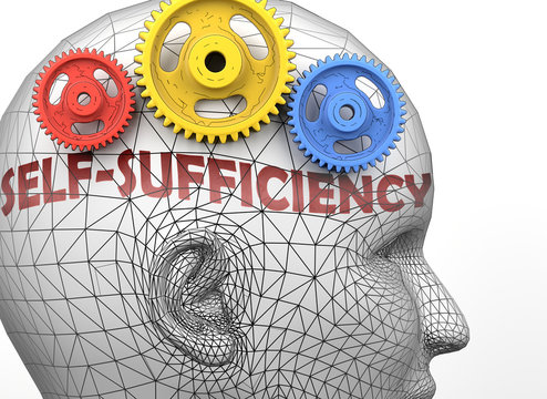 Self sufficiency and human mind - pictured as word Self sufficiency inside a head to symbolize relation between Self sufficiency and the human psyche, 3d illustration
