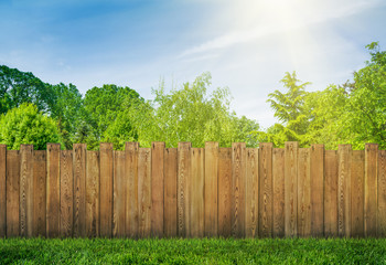 Poster Tuin trees in garden and wooden backyard fence with grass