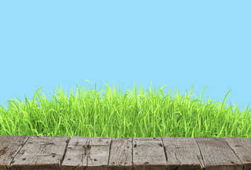 Wall Mural - Wooden table and spring grass background