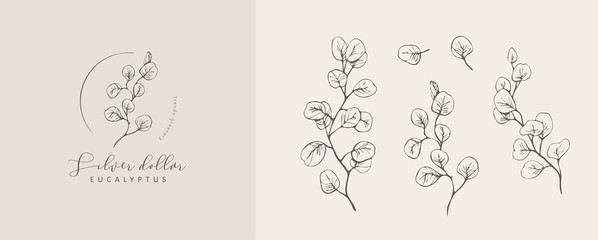 Silver Dollar eucalyptus logo and branch. Hand drawn wedding herb, plant and monogram with elegant leaves for invitation save the date card design. Botanical rustic trendy greenery Wall mural