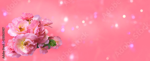 Bouquet of pink roses with a bud on a pink background with bokeh, mockup for greeting card Happy Valentine's Day, Mother's Day, banner, background, copy space