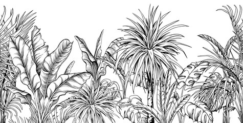Seamless border with black and white tropical plants. Fototapete
