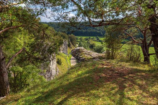Naturschutzgebiet Juratrockenhang im Altmühltal in Bayern