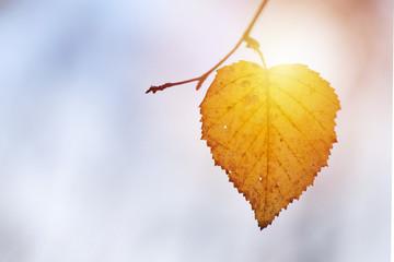 Season change or sunny weather forecast symbol Fotobehang