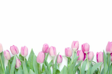 Tulips flowers on white background. Flat lay, top view. Lovely greeting card with tulips for Mother's day, wedding or happy event - Image.