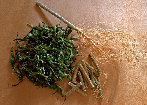 Dry hemp on paper background