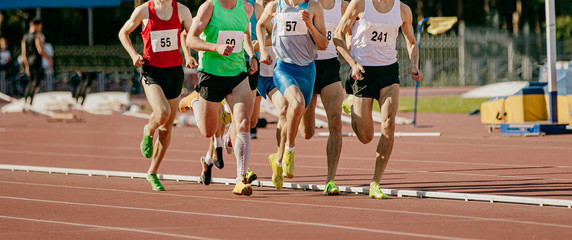 Fototapete - group male runners running middle distance race