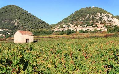 Cabane dans les vignobles du village de Séguret en Provence. Wall mural