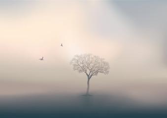 Stores à enrouleur Blanc Pendant la saison d'hiver, le jour se lève sur un paysage de campagne, avec pour unique décor un arbre sans feuille perdu dans la brume.