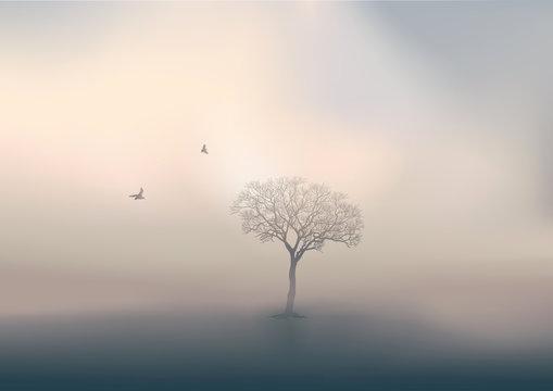 Pendant la saison d'hiver, le jour se lève sur un paysage de campagne, avec pour unique décor un arbre sans feuille perdu dans la brume.