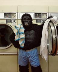 Responsible Gorilla Doing Laundry
