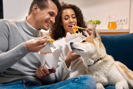 Young adult multi ethnic couple eating chinese food, looking at dog