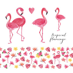 Tuinposter Flamingo Tropical collection watercolor flamingo with seamless border. Beautiful hand drawn illustrations for decoration, print, posters, textile design, postcard. Isolated on white background