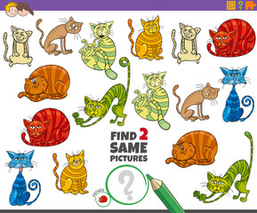 find two same cats educational task for kids