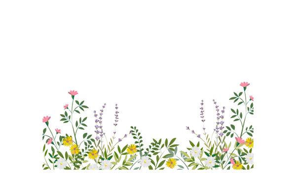 ラベンダーと野草