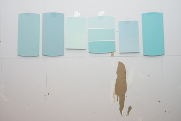 Kitchen Remodel Paint Swatches on Wall