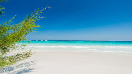 Wall Mural - Nice beach and beautiful white sandy for relaxation in summer, Located Similan island, Thailand