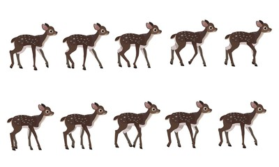 Spotted deer's walking cycle for animation. Steps of deer cub.