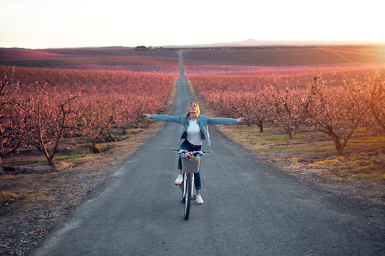 Pretty young woman with a vintage bike enjoying the time in cherry field in springtime.
