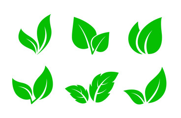Fototapeta set of green leaves iconsset of green leaves icons obraz