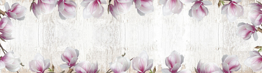 Frame made of beautyful flourish magnolia and soft flares and bokeh isolated on white rustic shabby vintage wooden texture background banner panorama