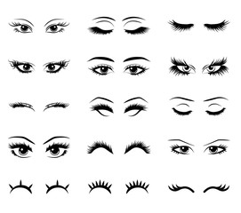 Eyelash vector set collection graphic clipart design