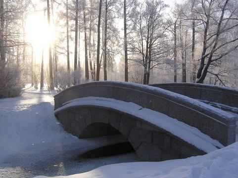 Tsarskoye Selo in the snow