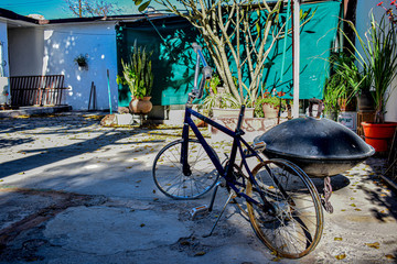 Aluminium Prints Bicycle Mexico backyard