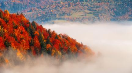 jesień w Pieninach, Polska