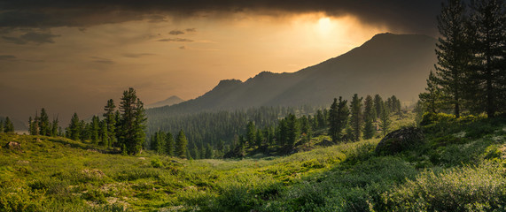 Panoramic view with mountain range, evergreen cedar trees, green grass valley and dramatic clouds sunset in Chamar-Daban, Siberia, Russia, national park Fototapete