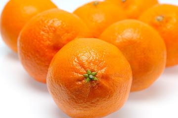 One Tangerine In Focus With Others