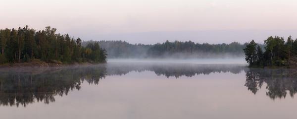 Aluminium Prints Dark grey morning landscape on a forest lake